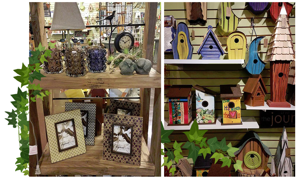 Garden Store Louisville KY Secret Garden Shop Adorable Gardening Decorative Accessories